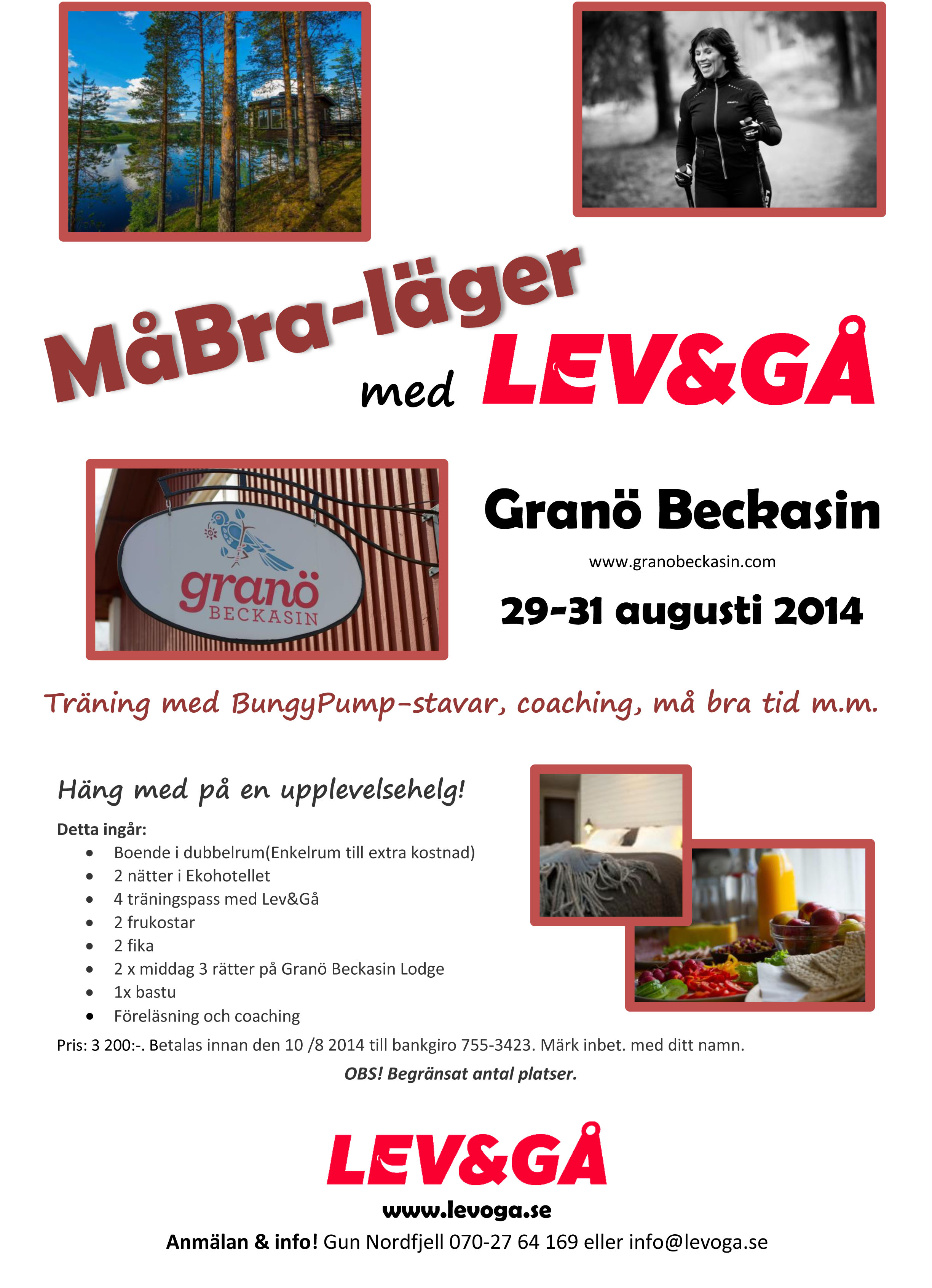 levogå-lägret 2014